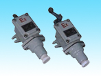 8077/1-Series Explosion-Proof Limit Switches For Plants
