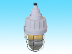 FAD62 Type water-proof dust-proof corrosion-proof lamp